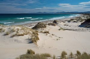 things to do in Tasmania