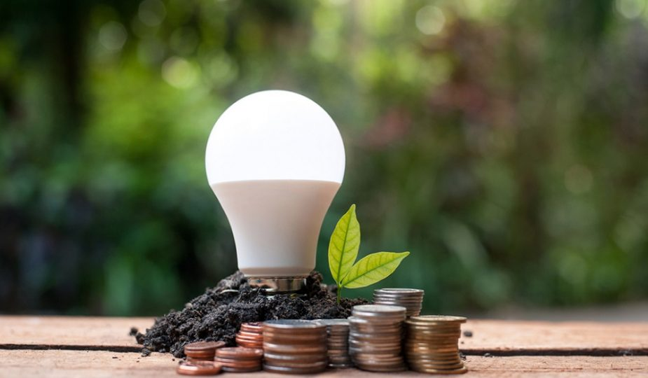 Why Australian Electricians Are Suggesting Energy Efficient Bulbs