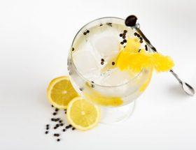 Types of Australian Gin: What's Your Gin Type?