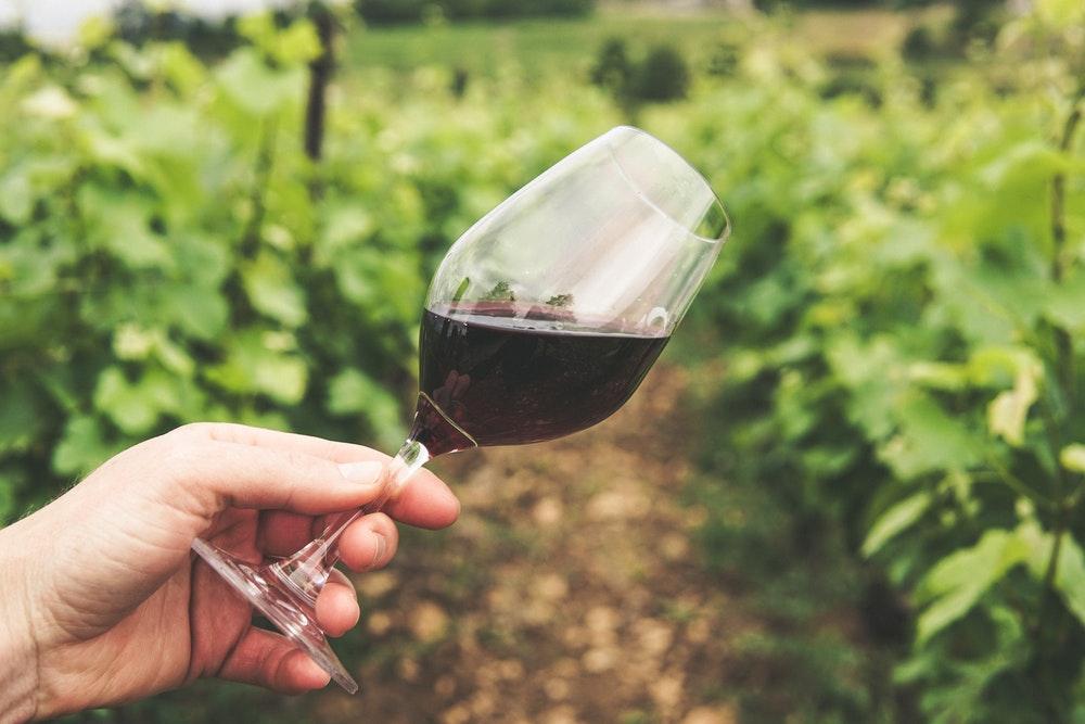 Best Australian Wine Regions