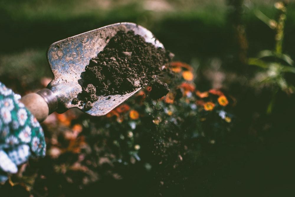 Prepare Garden Soil for Planting